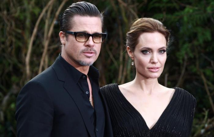 Angelina Jolie seeks to sell share of Nouvel LLC wine business