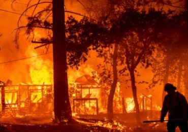 Algerian authorities arrest 30 people involved in forest fires
