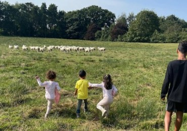 Cristiano Ronaldo moves house over bleating sheep