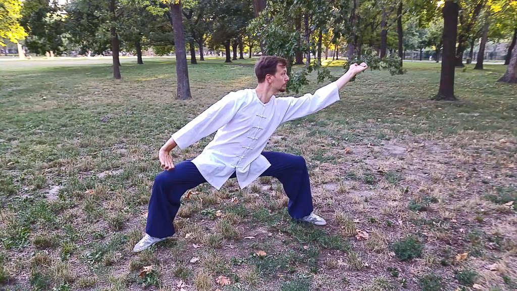 Learning Fu Hu Quan for Beginners Part 3