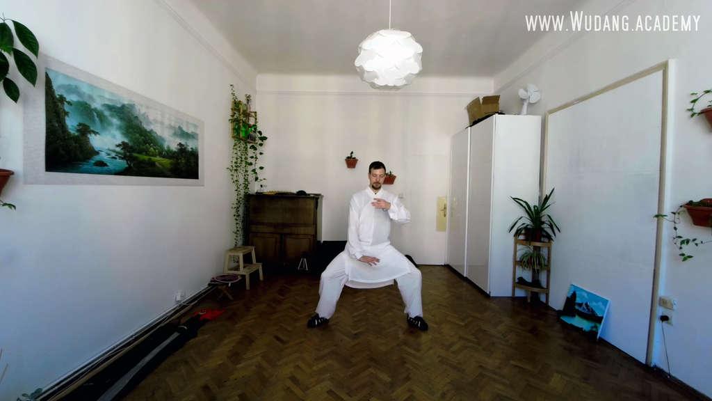 Tai Yi Wu Xing Quan Full Form Crash Course