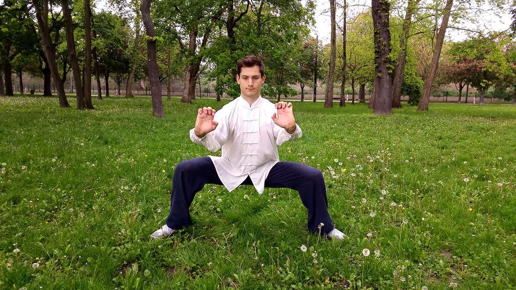 Wu Xing Qi Gong (Five Animal Qi Gong) Watching Basic Postures