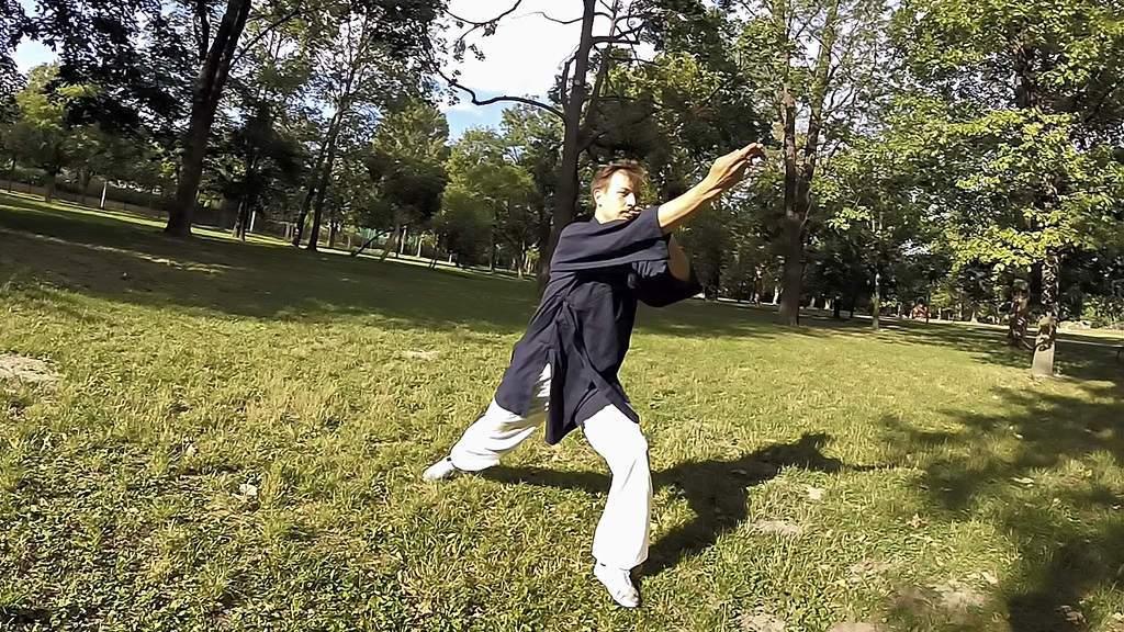 Taming the Tiger - Wu Dang Fu Hu Quan