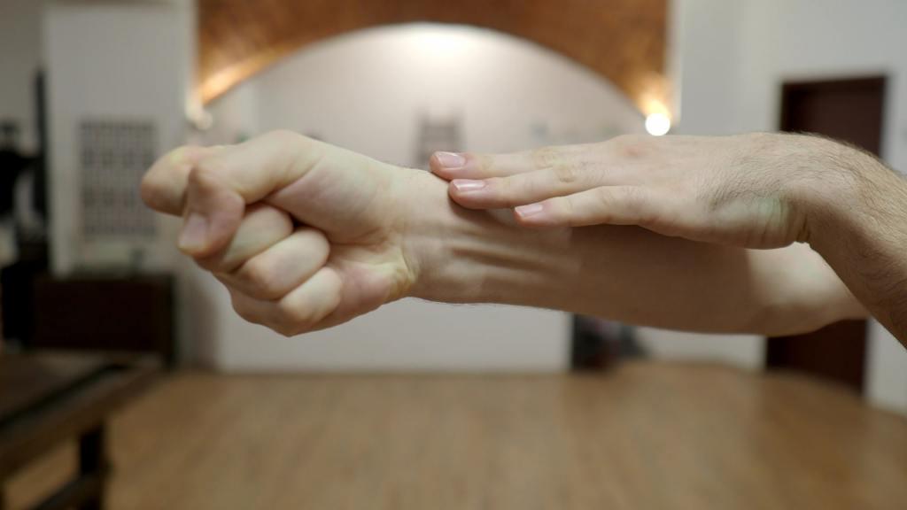 Xing Yi Quan Fist