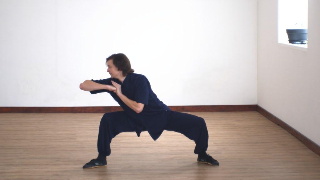 Master Ziji Xuan Gong Quan Part 3