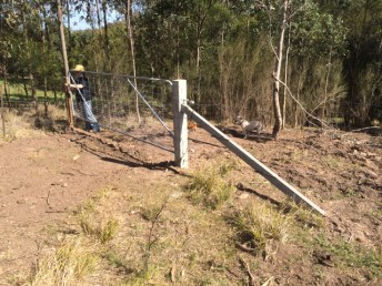 Concrete strainers, stay and blocks with 14 foot gate