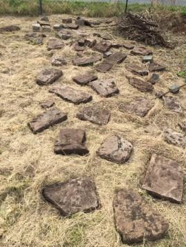 Die Ausgrabungen