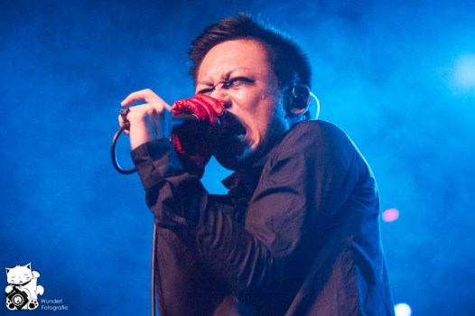 direngrey2013_23.jpg
