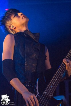 direngrey2013_31.jpg