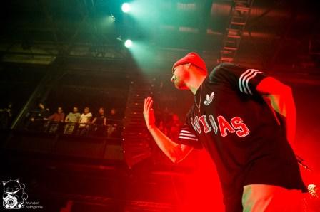 Beatsteaks_Palladium-36.jpg