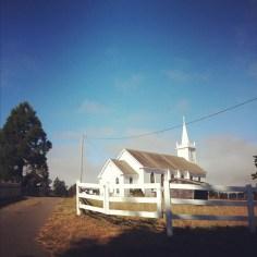 Bodega bay - wundertute