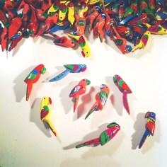 perroquets kokomo - wundertute