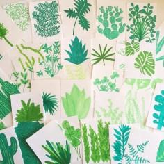 dessin plante - wundertute