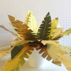 Atelier plante doree - wundertute
