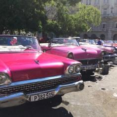 voitures cuba - wundertute