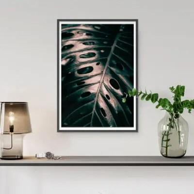monstera jungle tropisch