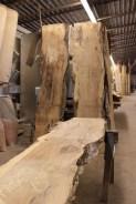 WunderWoods funky elm natural live edge slab table top