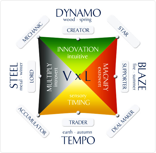 Find your Entrepreneurial Style with Wealth Dynamics
