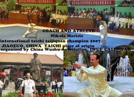 international-taichi-champion-nikolas-copy
