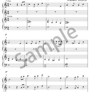 天空之城Piano Duet