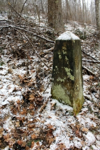 The monument that establishes a north panhandle of West Virginia from a brush pile.