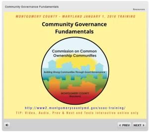 Community Governance Fundamentals