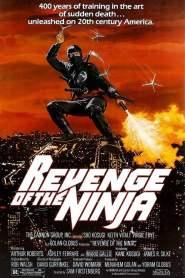 La venganza del Ninja