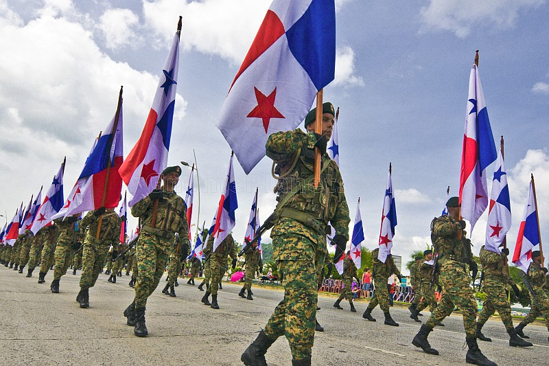 Image result for panama defense