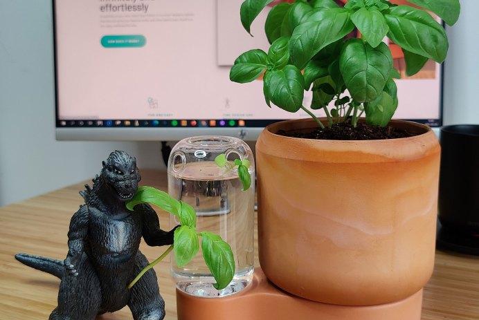 greenfinity kickstarter