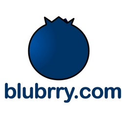 Image result for blubrry logo