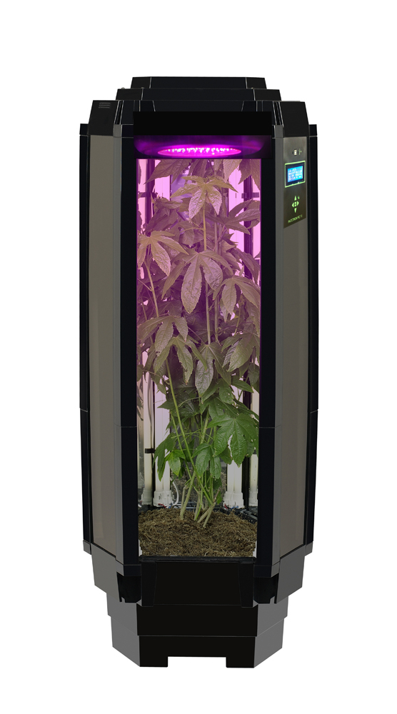 Making Hydroponic Grow Box