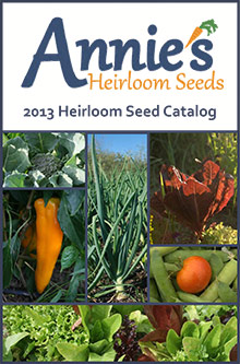 Top 10 Seed Catalogs for the PREPared Gardener - Annie's Heirloom Seeds | Mom with a Prep