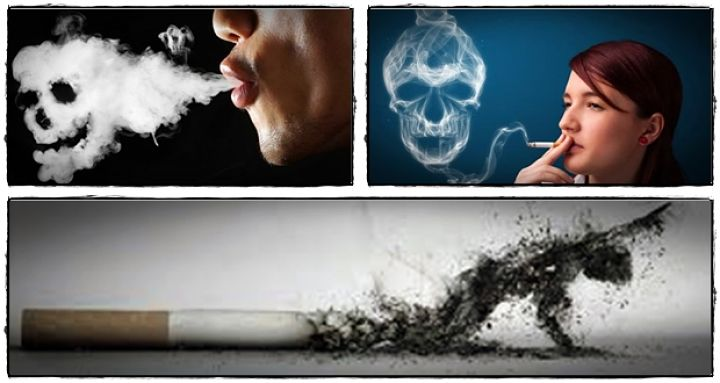 """""""The Effects Of Smoking,"""" A New Article On"""