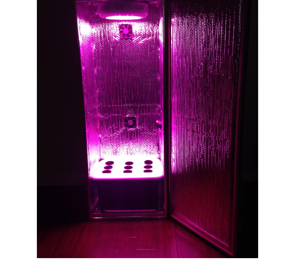 What Grow Box Hydroponic