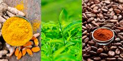 Turmeric vs green tea vs cocoa