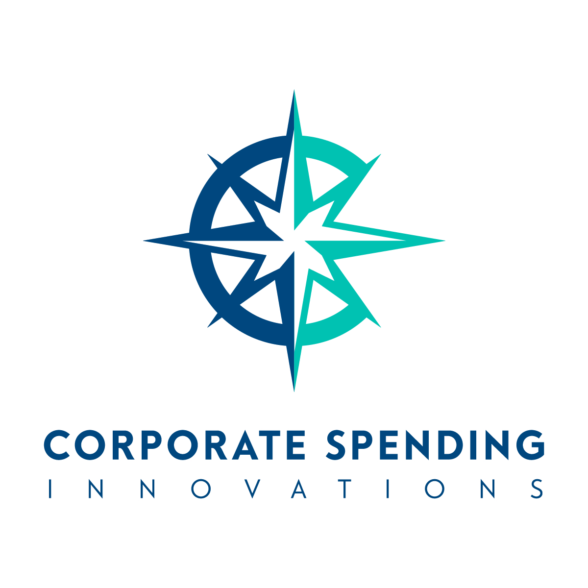 Business Corporate Solutions Inc