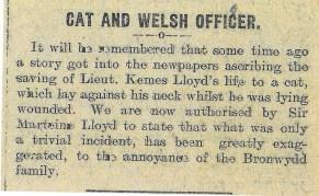 1915 WW1 week 23 Cat