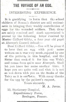 1915 WW1 week 35 Voyage of an Egg