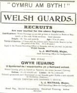 CTA 16-04-15 Welsh Guard Recruits