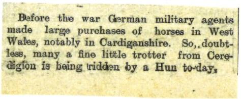1915 WW1 week 47 CTA 16-06-15 Cardiganshire horses