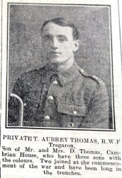 1916 week 82 CN 25-2-16 Private T. Aubrey Thomas Tregaron