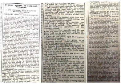 1916 week 96 CTA 2-6-16 Cardigan Tribunal