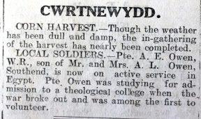 cwrtnewydd-resized