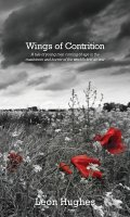 Wings of contrition: A tale of young men coming of age in the maelstrom and horror of the world's first air war