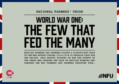 The-Few-That-Fed-The-Many---WW1-report-1