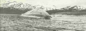 capsized battleship 'Tirpitz'