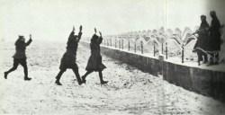 Alsatian run over to the German lines