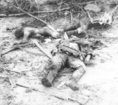Japanese suicide squad