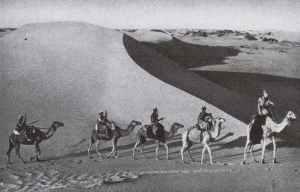 Italian Camel-mounted troops