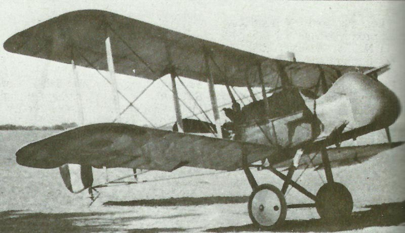 DH2 were flown by RCF squadrons in Palestine